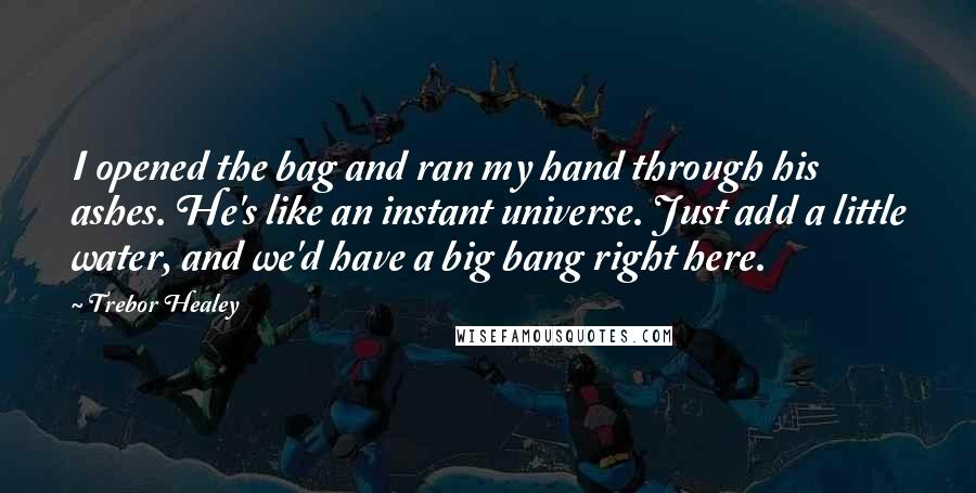 Trebor Healey quotes: I opened the bag and ran my hand through his ashes. He's like an instant universe. Just add a little water, and we'd have a big bang right here.