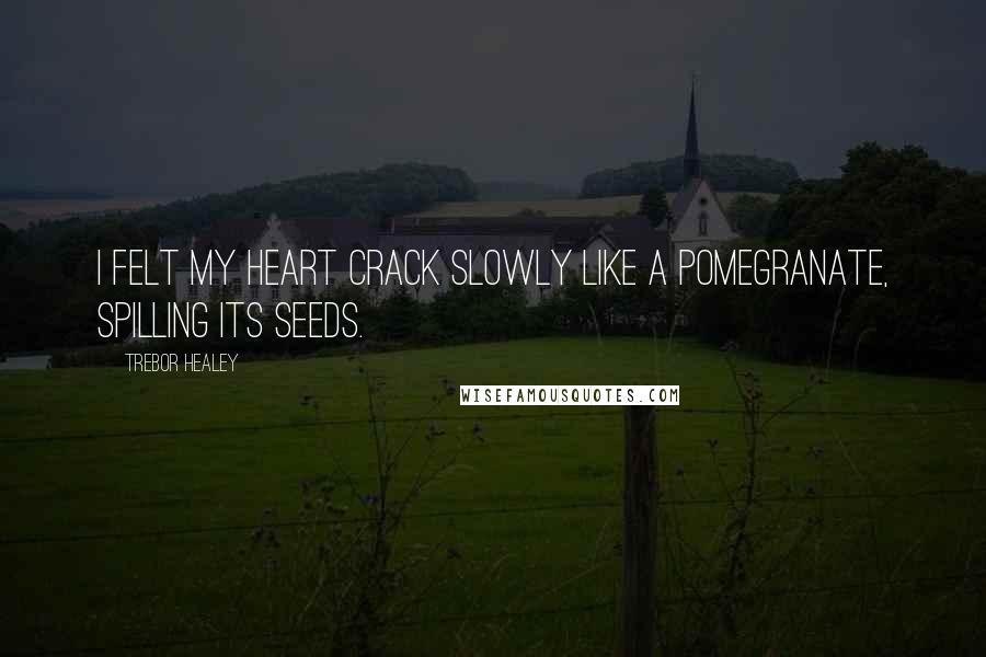 Trebor Healey quotes: I felt my heart crack slowly like a pomegranate, spilling its seeds.