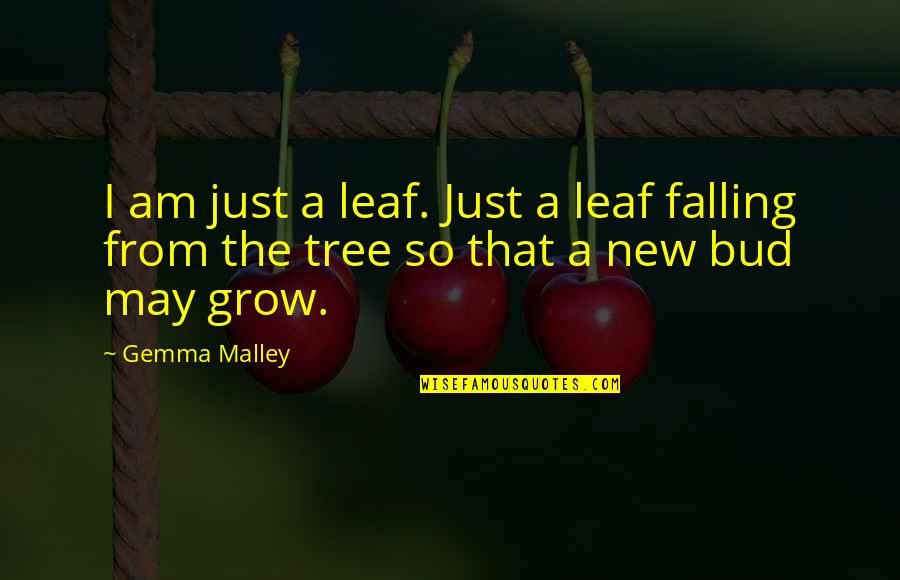 Tree And Leaves Quotes By Gemma Malley: I am just a leaf. Just a leaf