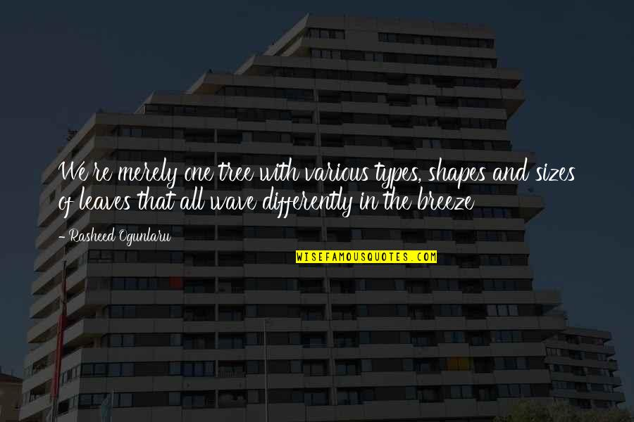 Tree And Leaves Quotes By Rasheed Ogunlaru: We're merely one tree with various types, shapes