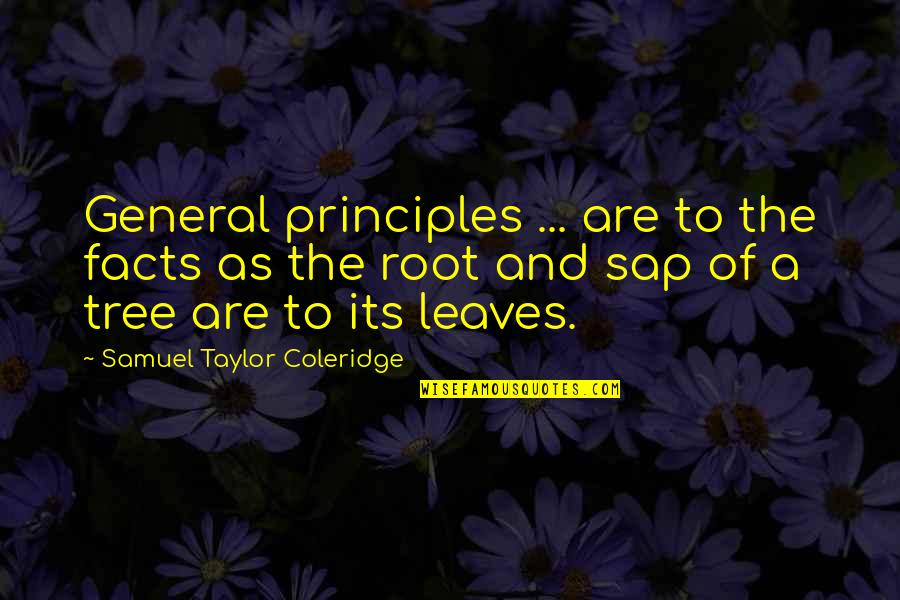 Tree And Leaves Quotes By Samuel Taylor Coleridge: General principles ... are to the facts as