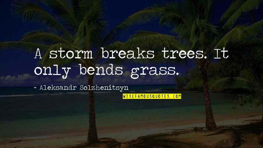 Tree Bends Quotes By Aleksandr Solzhenitsyn: A storm breaks trees. It only bends grass.
