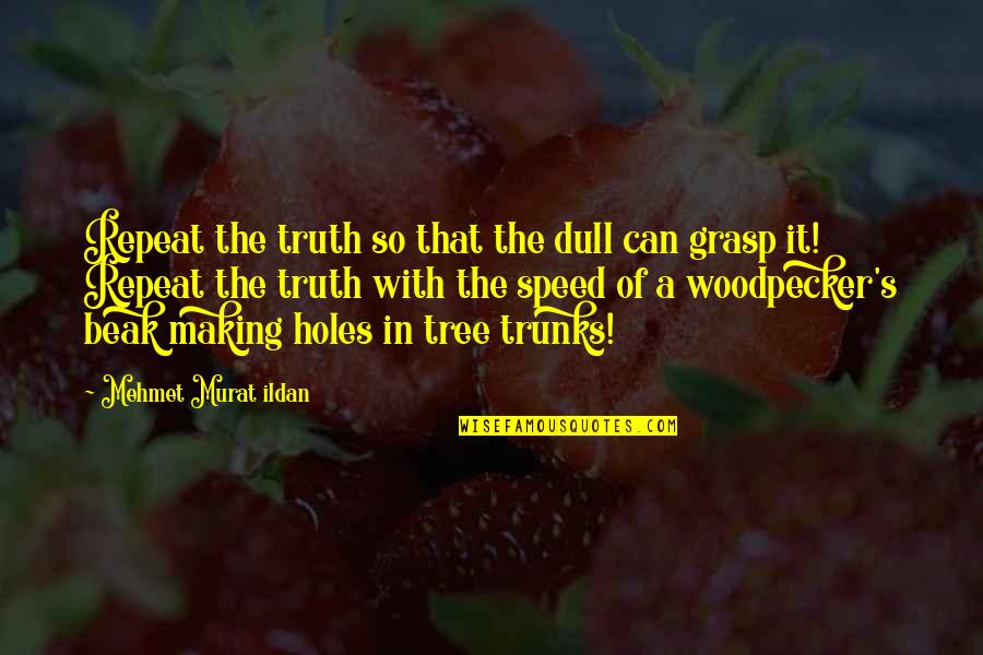 Tree Trunks Quotes By Mehmet Murat Ildan: Repeat the truth so that the dull can