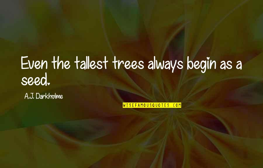 Trees And Learning Quotes By A.J. Darkholme: Even the tallest trees always begin as a