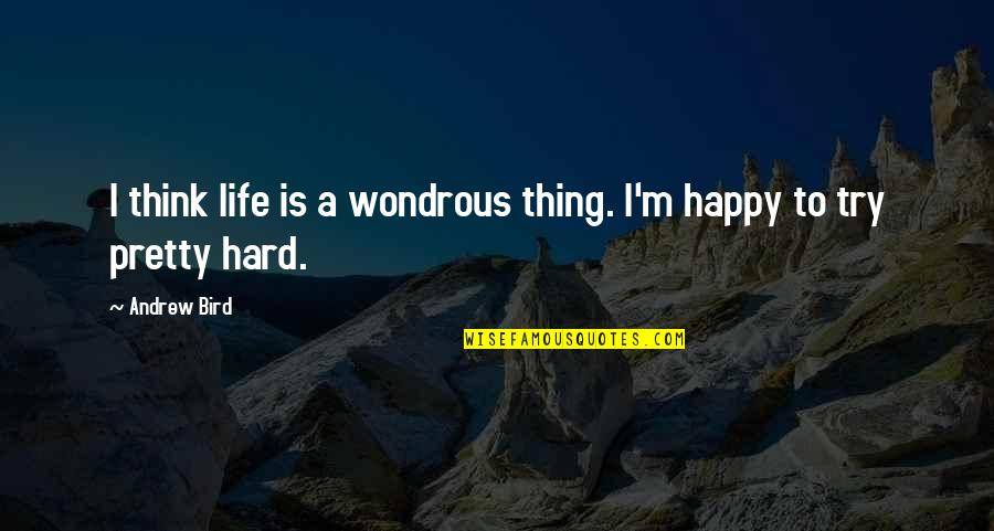 Trees And Learning Quotes By Andrew Bird: I think life is a wondrous thing. I'm
