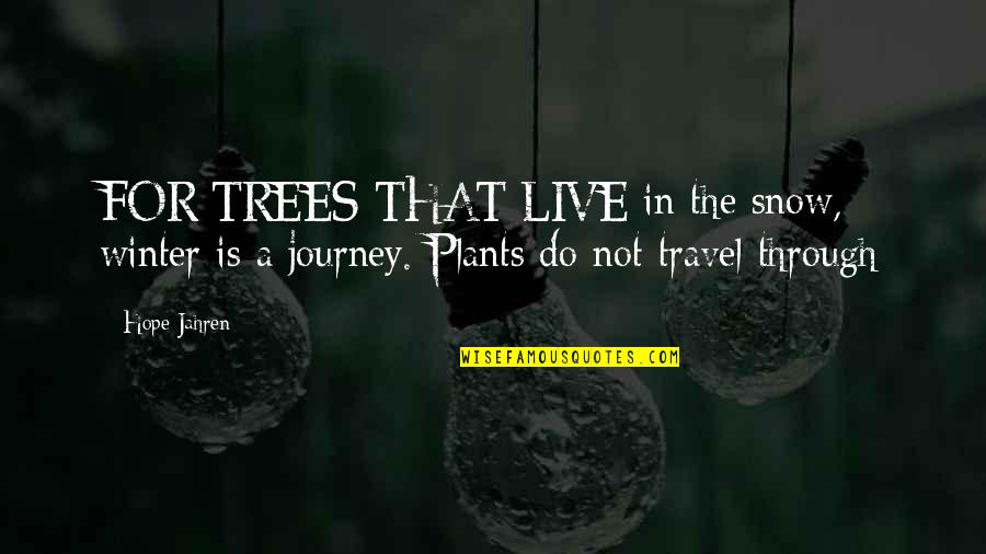 Trees And Plants Quotes By Hope Jahren: FOR TREES THAT LIVE in the snow, winter