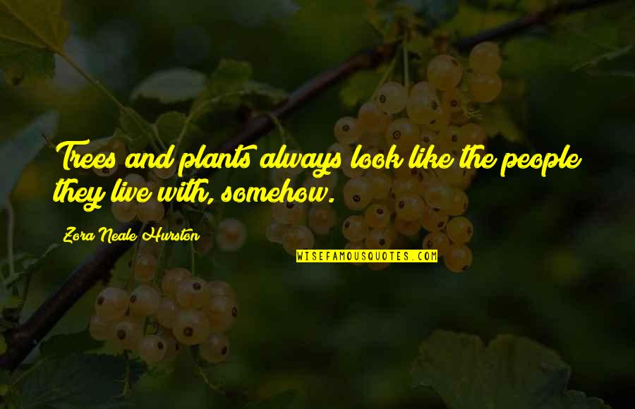 Trees And Plants Quotes By Zora Neale Hurston: Trees and plants always look like the people