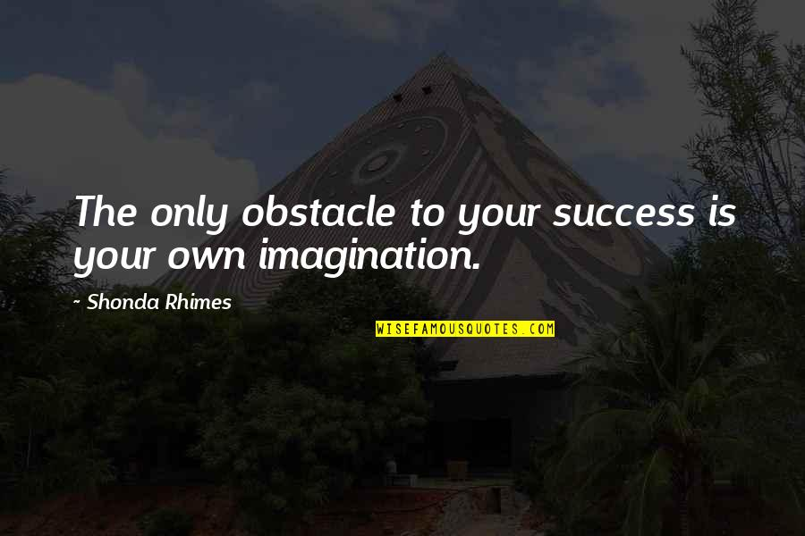 Triggs Quotes By Shonda Rhimes: The only obstacle to your success is your
