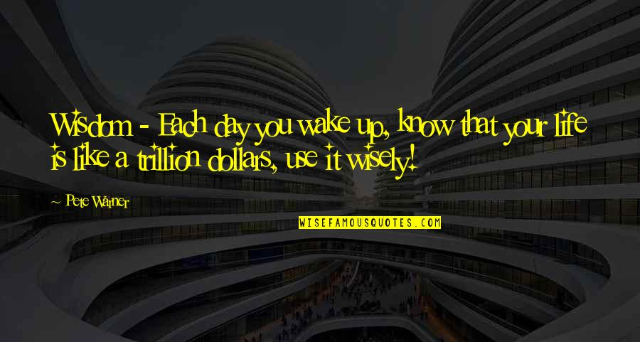 Trillion Quotes By Pete Warner: Wisdom - Each day you wake up, know