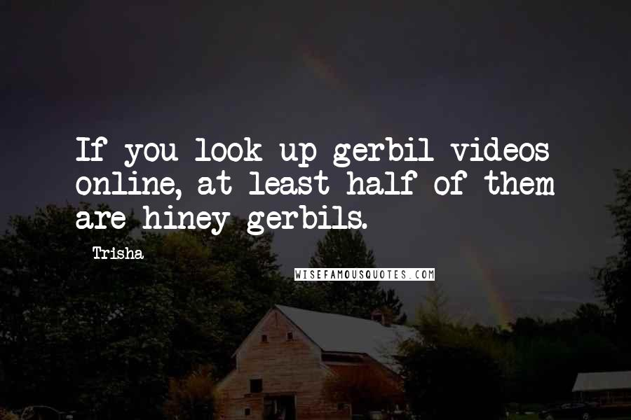Trisha quotes: If you look up gerbil videos online, at least half of them are hiney gerbils.