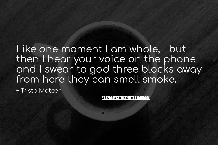 Trista Mateer quotes: Like one moment I am whole, but then I hear your voice on the phone and I swear to god three blocks away from here they can smell smoke.