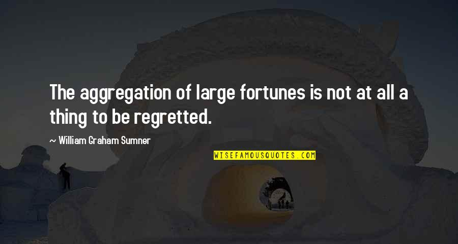 Triumph Over Tragedy Quotes By William Graham Sumner: The aggregation of large fortunes is not at