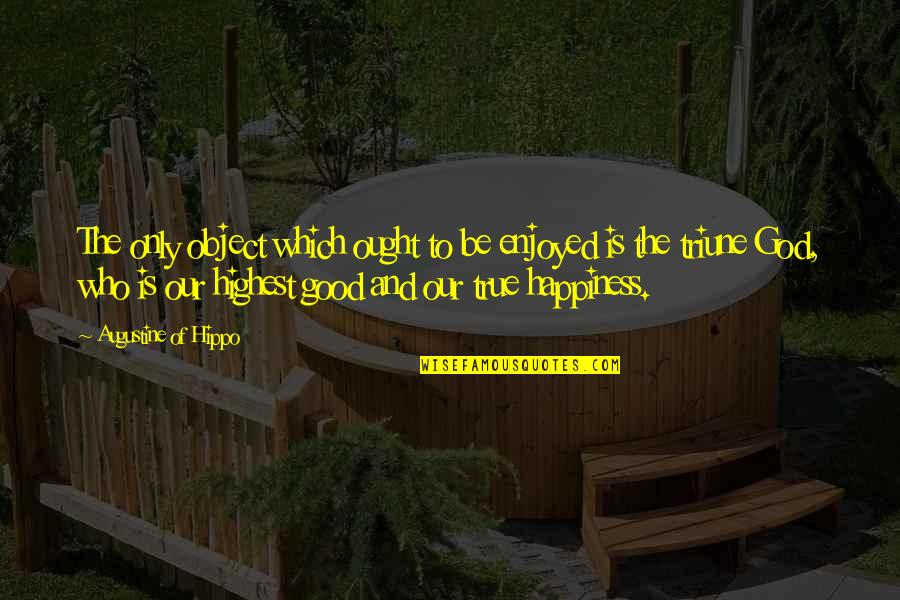 Triune Quotes By Augustine Of Hippo: The only object which ought to be enjoyed