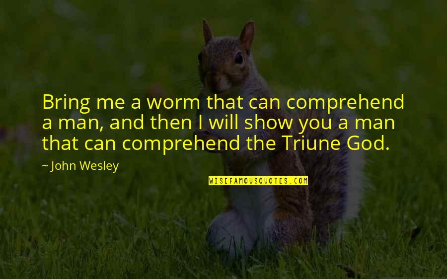 Triune Quotes By John Wesley: Bring me a worm that can comprehend a