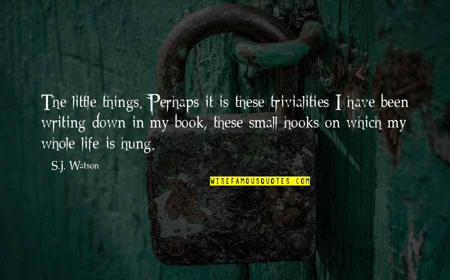 Trivialities Quotes By S.J. Watson: The little things. Perhaps it is these trivialities
