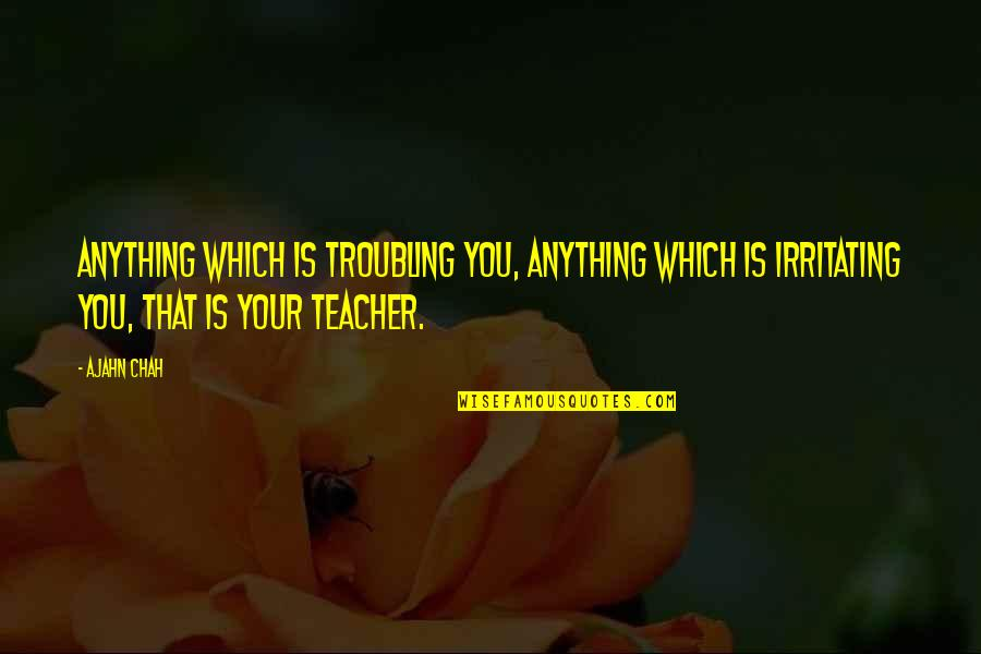 Troubling Quotes By Ajahn Chah: Anything which is troubling you, anything which is