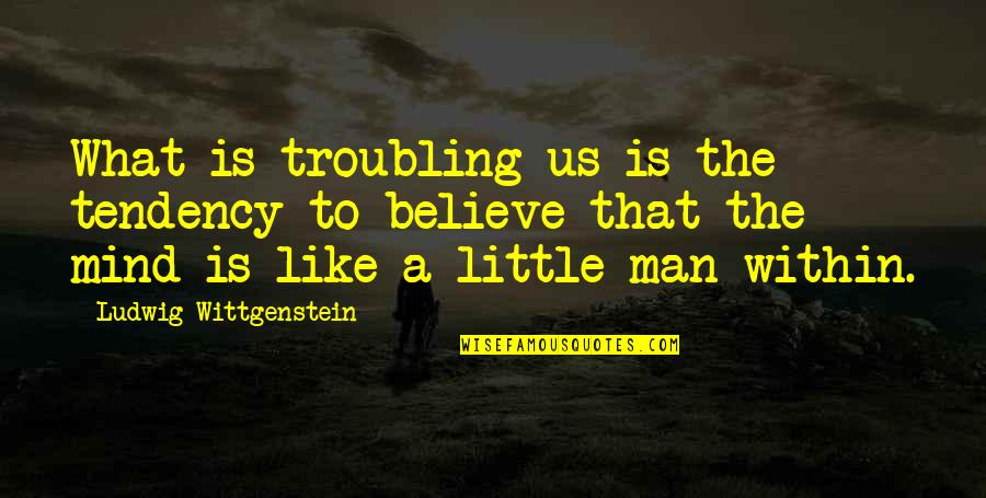 Troubling Quotes By Ludwig Wittgenstein: What is troubling us is the tendency to