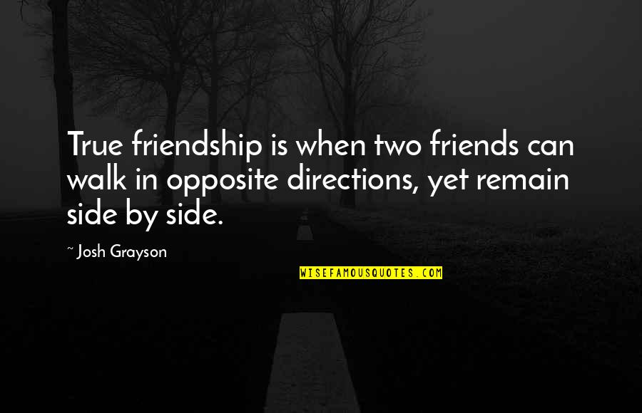 True Best Friendship Quotes By Josh Grayson: True friendship is when two friends can walk
