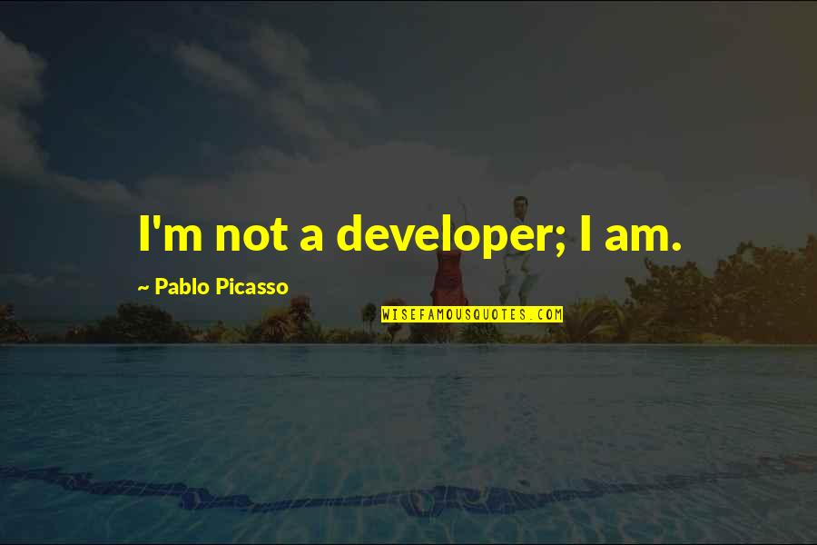 True Husband Quotes By Pablo Picasso: I'm not a developer; I am.