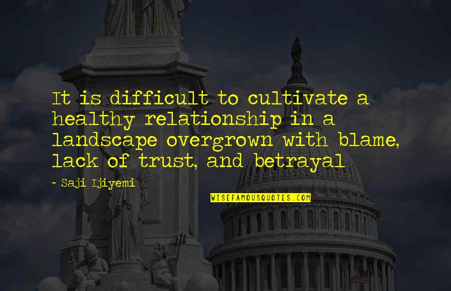 Trust In A Relationship Quotes By Saji Ijiyemi: It is difficult to cultivate a healthy relationship