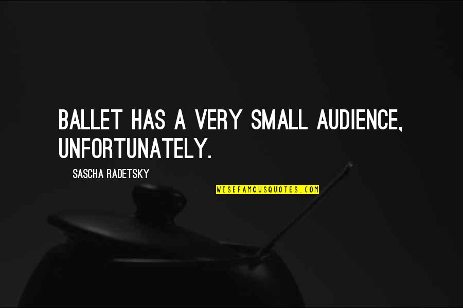 Trya Quotes By Sascha Radetsky: Ballet has a very small audience, unfortunately.