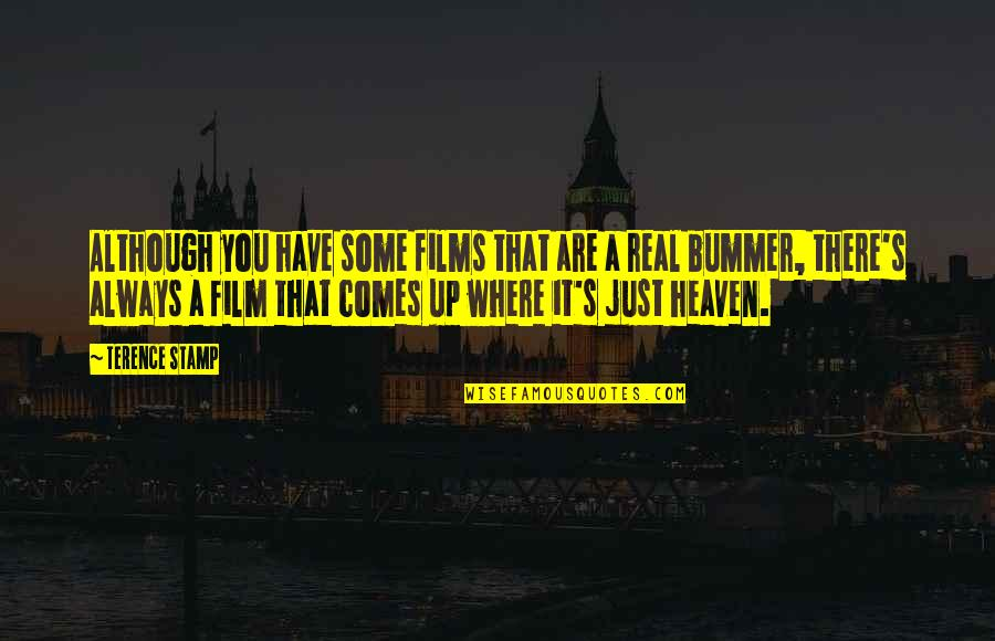 Trying To Bring Someone Down Quotes By Terence Stamp: Although you have some films that are a