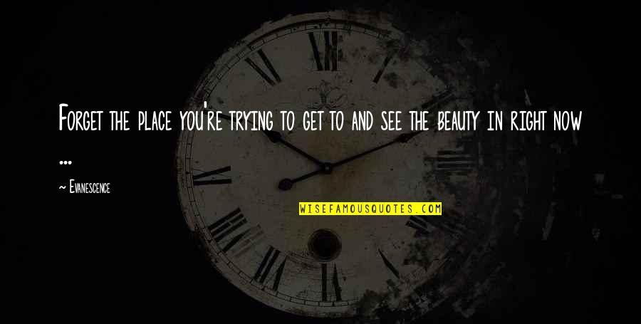 Trying To Get It Right Quotes By Evanescence: Forget the place you're trying to get to