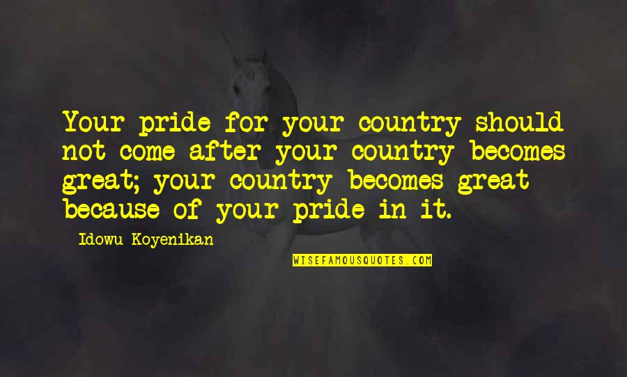 Trying To Make Someone Look Bad Quotes By Idowu Koyenikan: Your pride for your country should not come