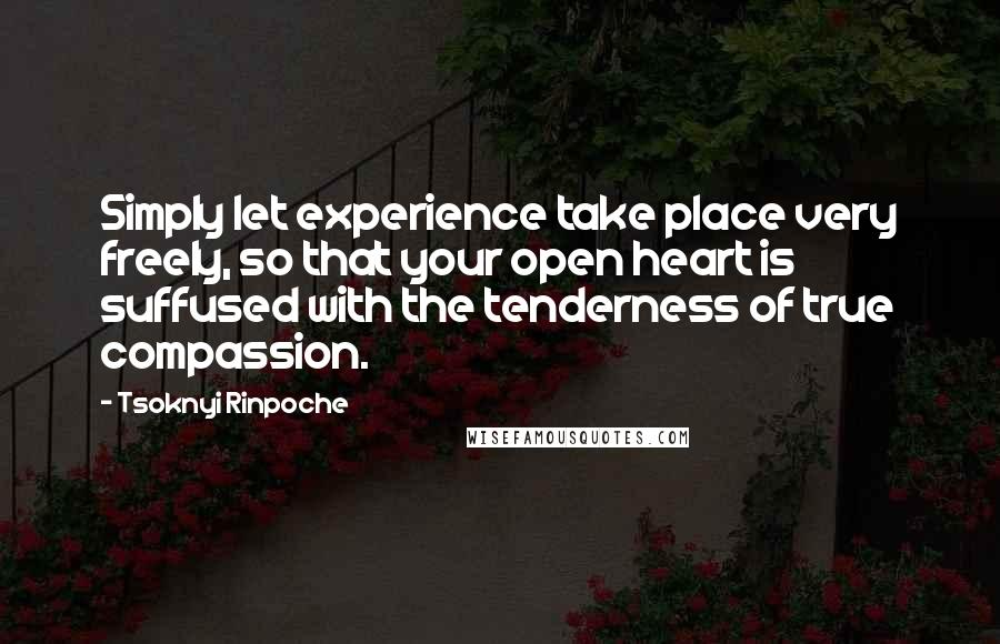 Tsoknyi Rinpoche quotes: Simply let experience take place very freely, so that your open heart is suffused with the tenderness of true compassion.