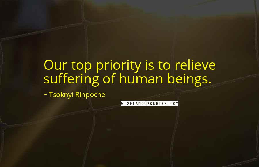 Tsoknyi Rinpoche quotes: Our top priority is to relieve suffering of human beings.