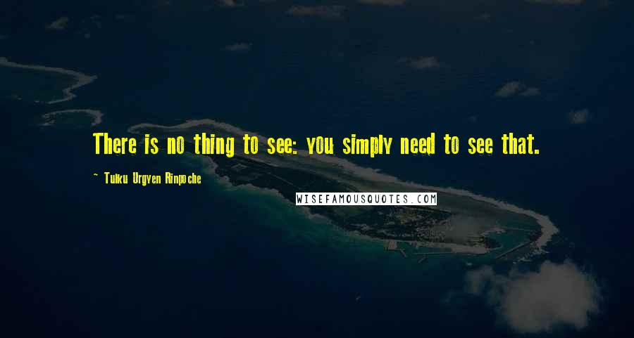 Tulku Urgyen Rinpoche quotes: There is no thing to see: you simply need to see that.