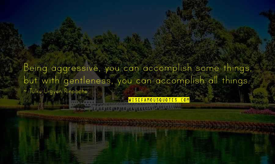 Tulku Urgyen Rinpoche Quotes By Tulku Urgyen Rinpoche: Being aggressive, you can accomplish some things, but