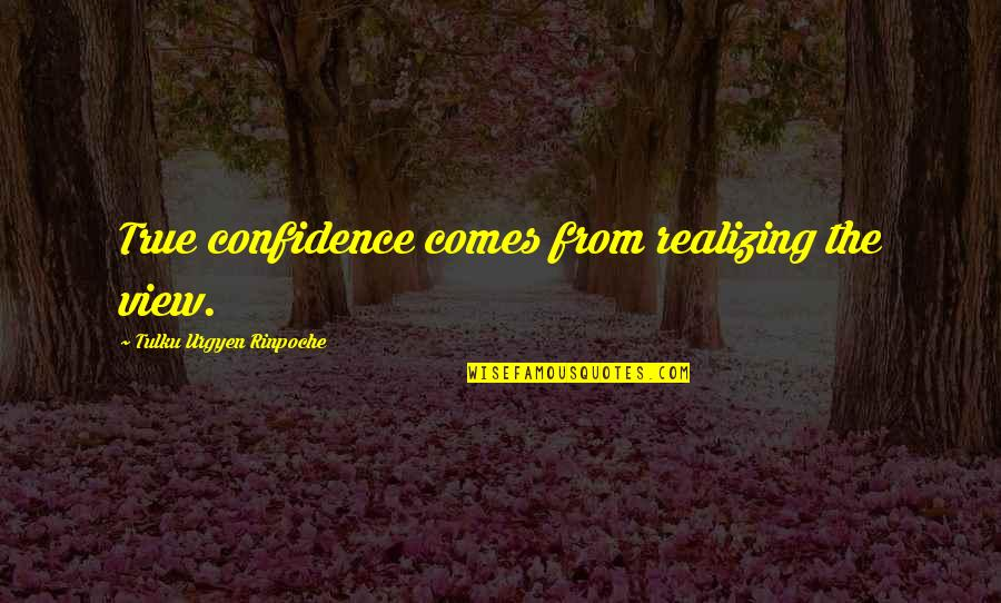 Tulku Urgyen Rinpoche Quotes By Tulku Urgyen Rinpoche: True confidence comes from realizing the view.