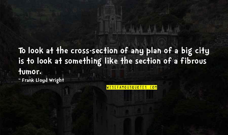 Tumor Quotes By Frank Lloyd Wright: To look at the cross-section of any plan