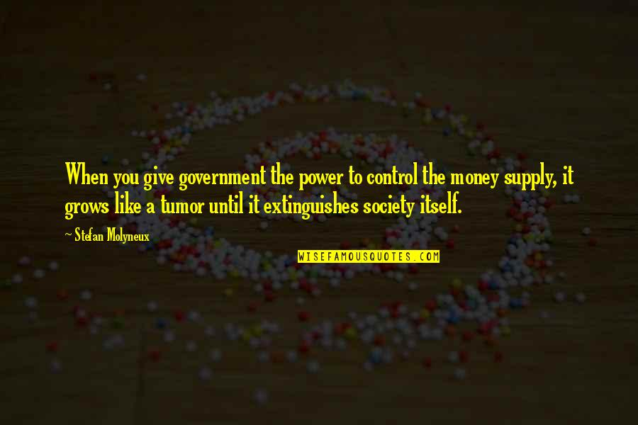 Tumor Quotes By Stefan Molyneux: When you give government the power to control