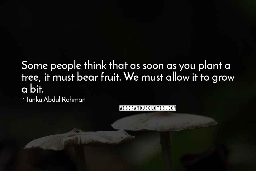 Tunku Abdul Rahman quotes: Some people think that as soon as you plant a tree, it must bear fruit. We must allow it to grow a bit.