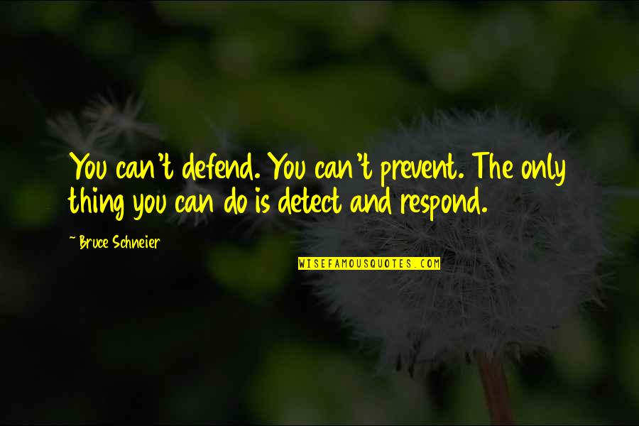 Turkey Country Quotes By Bruce Schneier: You can't defend. You can't prevent. The only