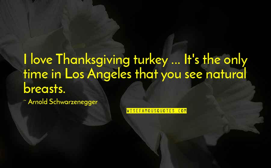 Turkey On Thanksgiving Quotes By Arnold Schwarzenegger: I love Thanksgiving turkey ... It's the only