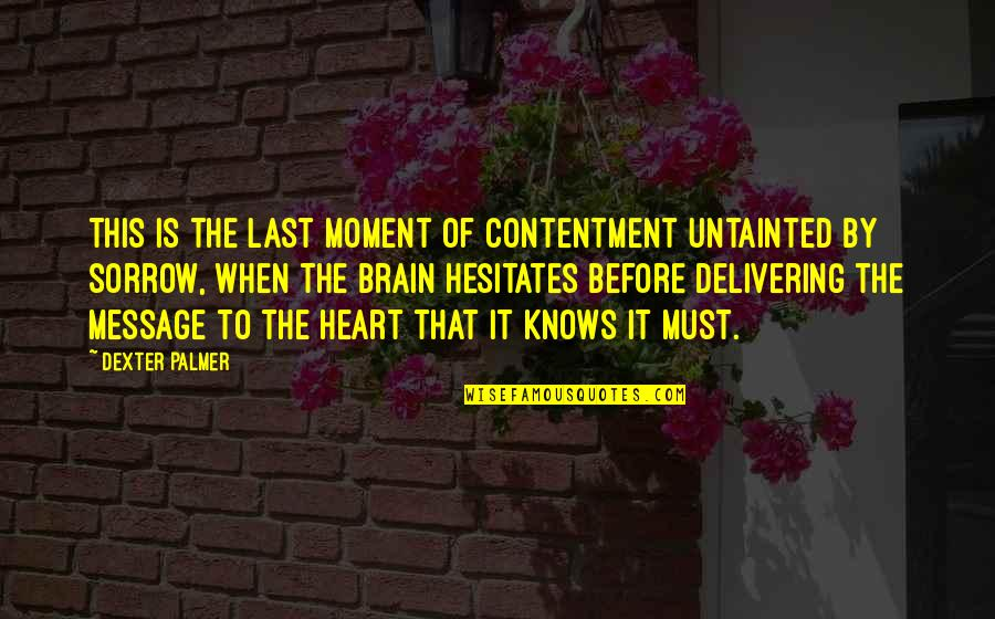 Turning Point Quotes By Dexter Palmer: This is the last moment of contentment untainted