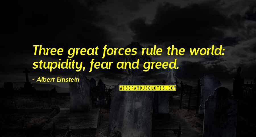 Turning Points In History Quotes By Albert Einstein: Three great forces rule the world: stupidity, fear