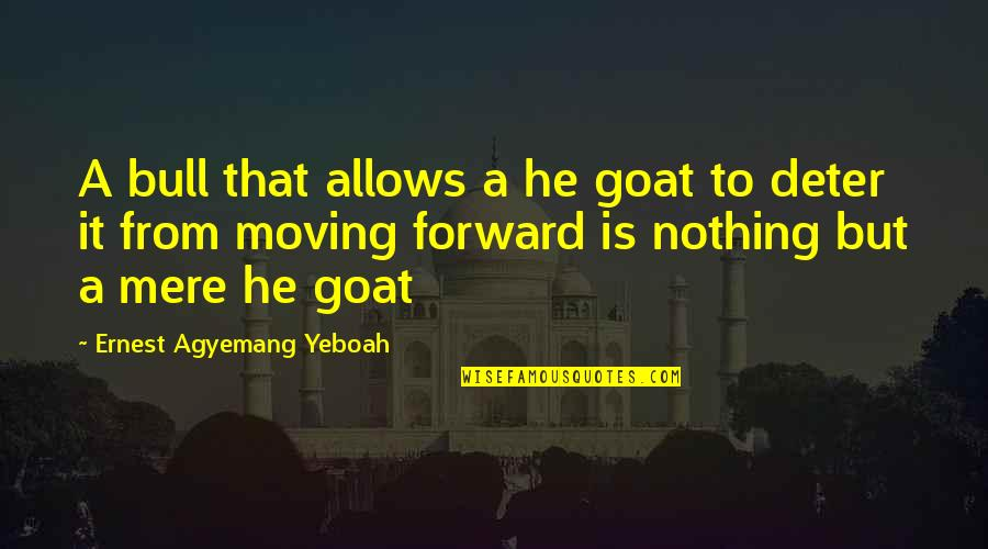 Tussin Quotes By Ernest Agyemang Yeboah: A bull that allows a he goat to
