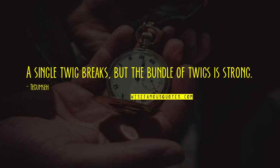 Twig Single Quotes By Tecumseh: A single twig breaks, but the bundle of