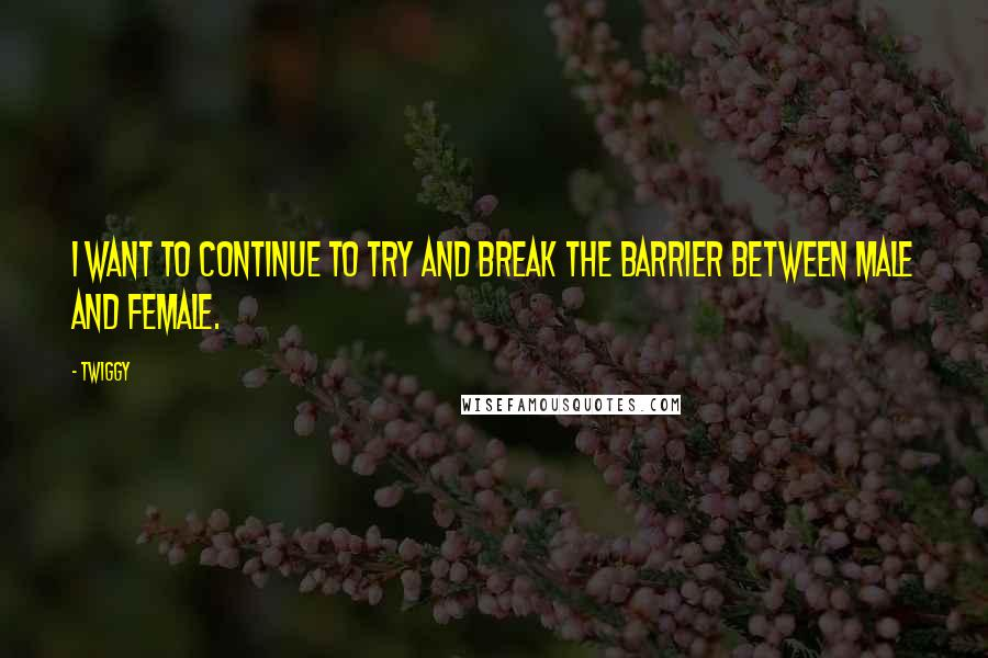 Twiggy quotes: I want to continue to try and break the barrier between male and female.