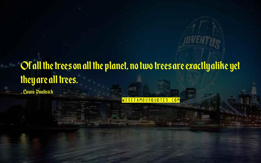 Two Alike Quotes By Laura Paulisich: Of all the trees on all the planet,