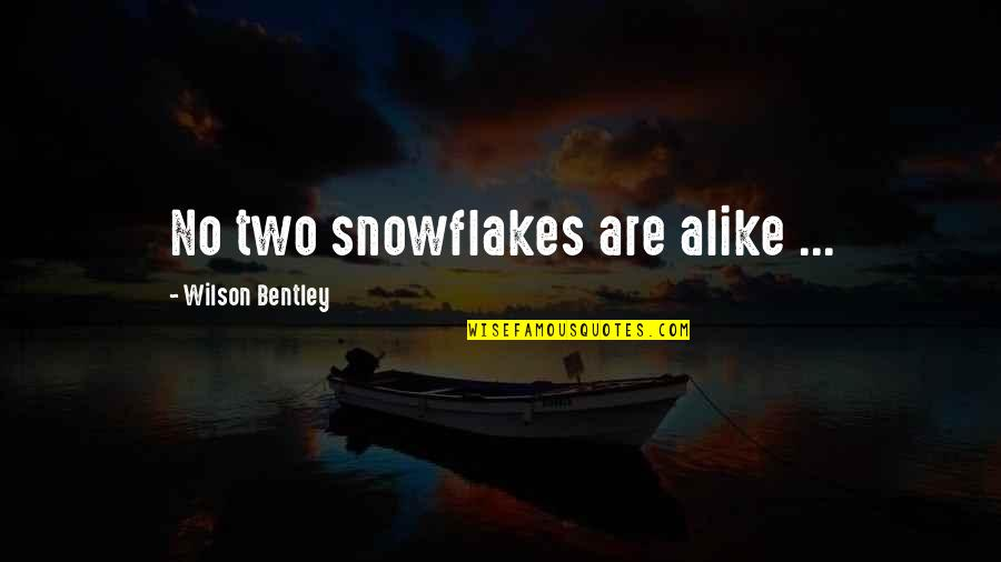 Two Alike Quotes By Wilson Bentley: No two snowflakes are alike ...