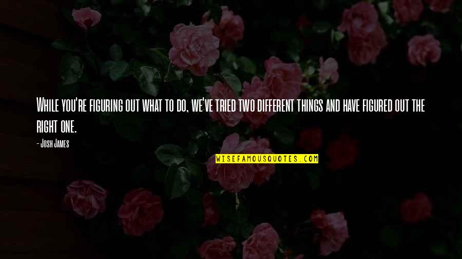 Two Different Things Quotes By Josh James: While you're figuring out what to do, we've
