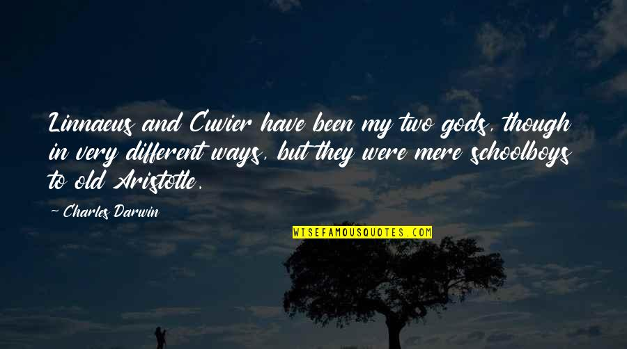 Two Different Ways Quotes By Charles Darwin: Linnaeus and Cuvier have been my two gods,