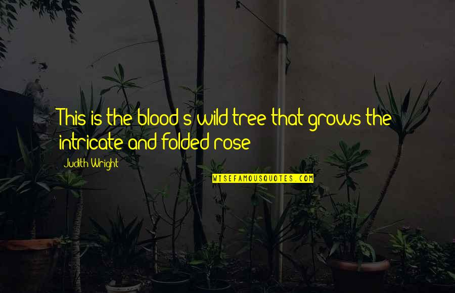 Tyr Anasazi Quotes By Judith Wright: This is the blood's wild tree that grows