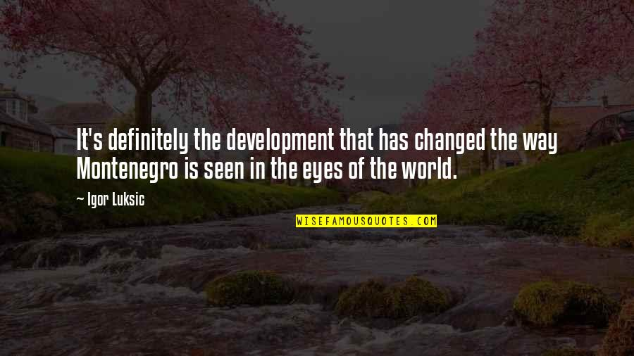 U Are Changed Quotes By Igor Luksic: It's definitely the development that has changed the