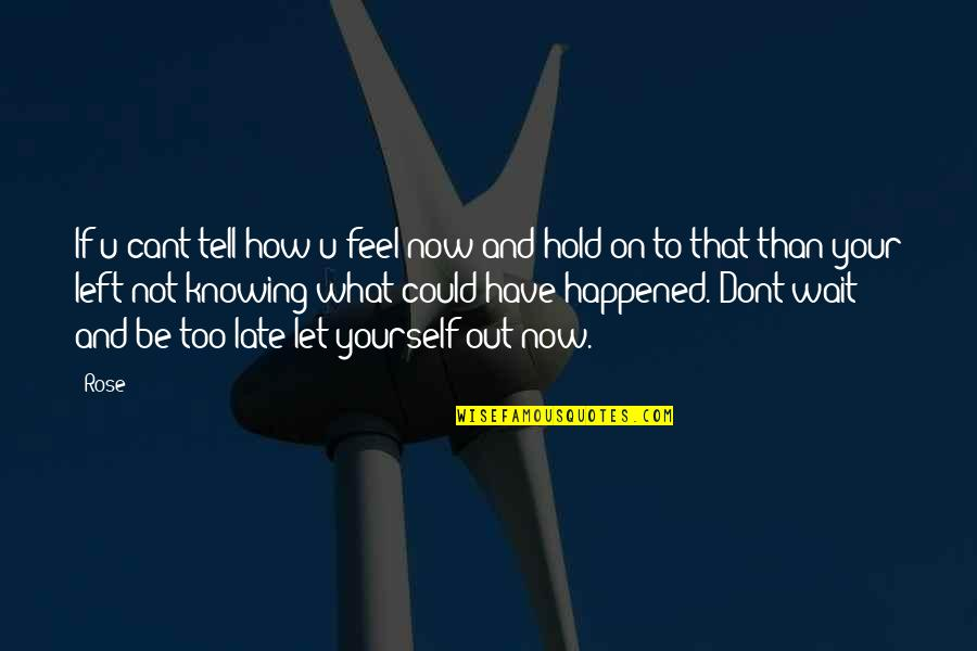 U Cant Have It All Quotes By Rose: If u cant tell how u feel now